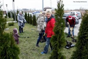 Sadzenie drzewek - 2015